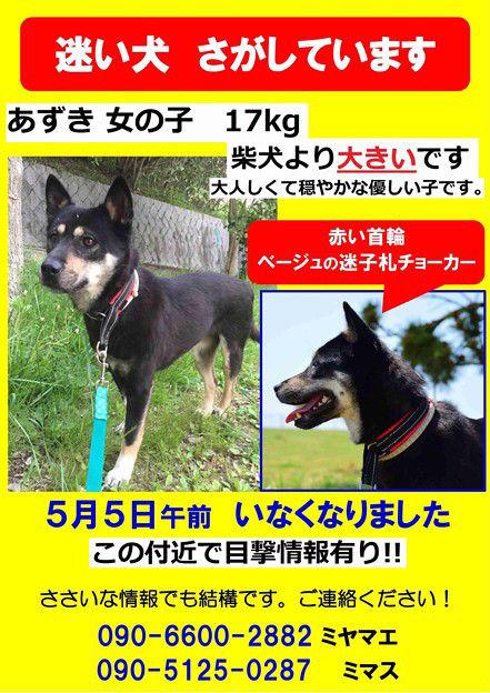 azuki new posterJUNE