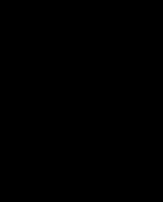 new-flyer-logo-150pxw[1]