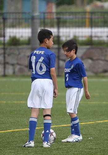 全日本少年サッカー神奈川県予選 4