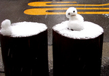 snow tsukishimaのお客様