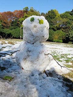 161125原っぱの雪だるま