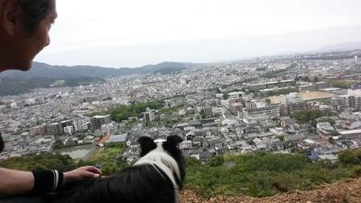 5-相棒ゴンタくんと宝ヶ池山間園路