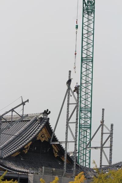 5-151009御影堂門仮設素屋根解体工事
