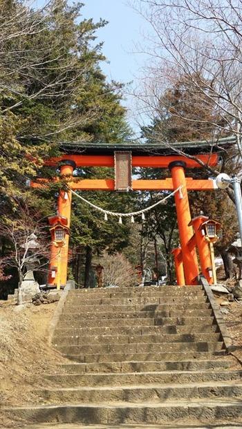 1-140312新倉山浅間公園