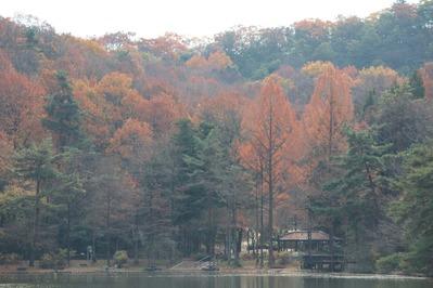 京都宝ヶ池