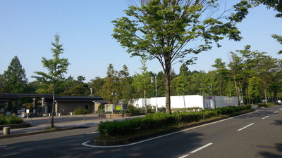 130514植物園北門カフェ工事