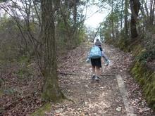 宝ヶ池山間園路の上り坂
