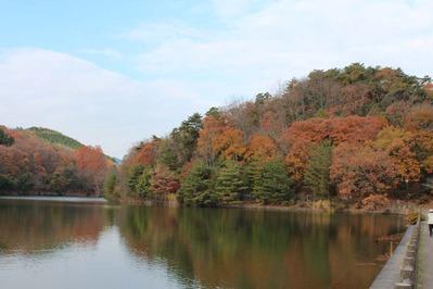 宝ヶ池秋の色