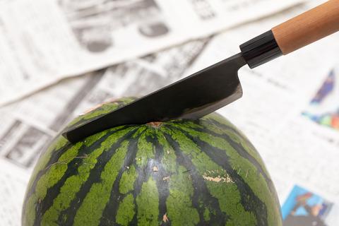 watermelon2025_TP_V