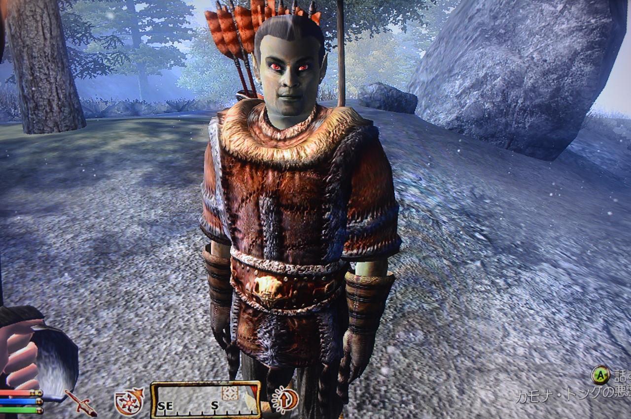 The Elder Scrolls IV・V:SKYRIM...