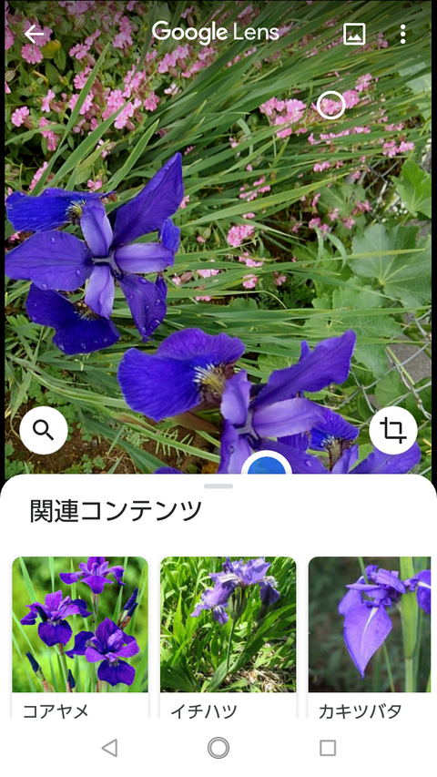 Screenshot_20200504-115741
