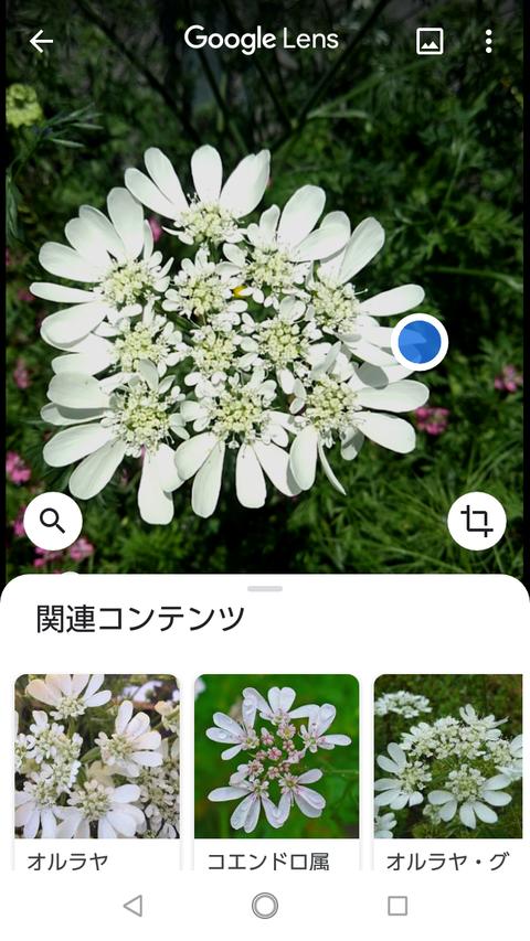 Screenshot_20200511-112656