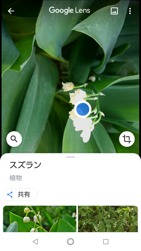 Screenshot_20200511-113409
