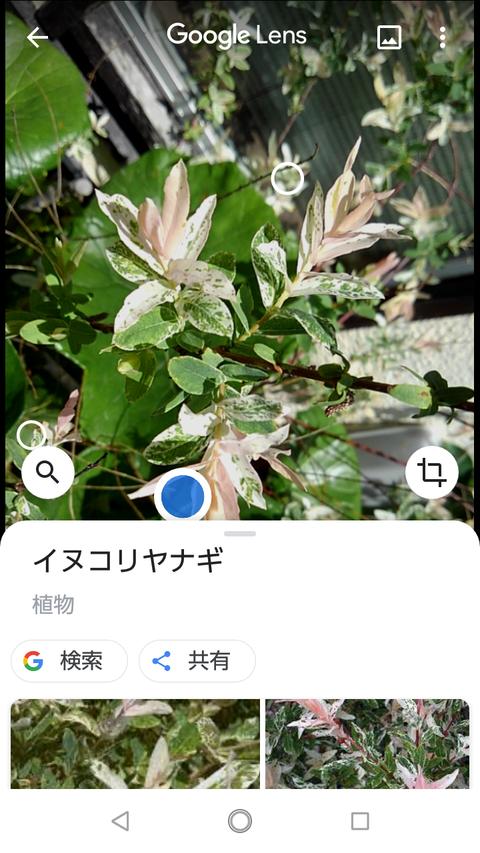 Screenshot_20200511-114108