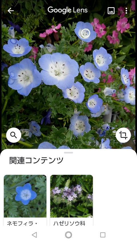 Screenshot_20200504-115942