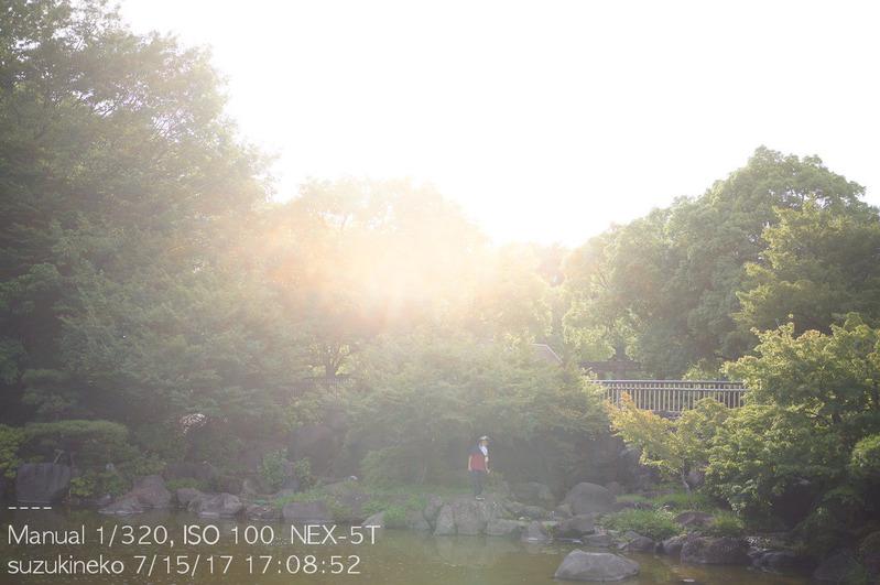 Lr6-20170715-_DSC9093-NEX5T