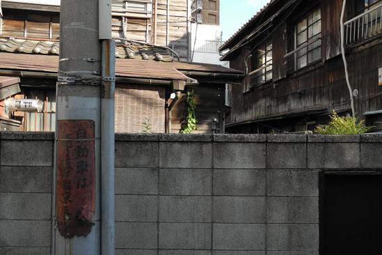 shinjuku-DSCN0324