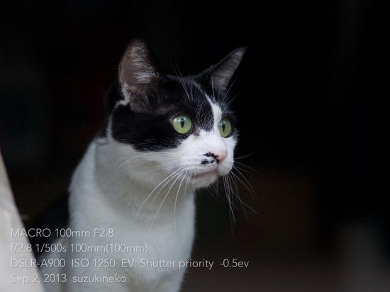 8Macro-2013-09-02-21 (1)