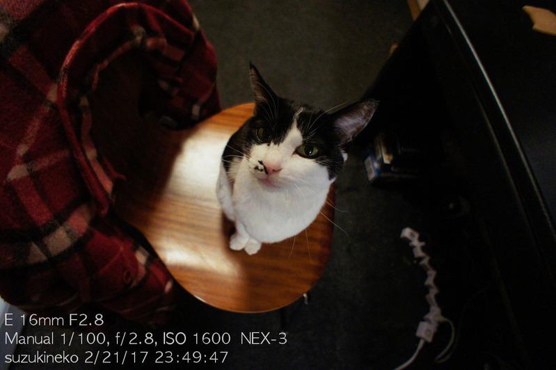 Lr6-20170221-_DSC6906-NEX3