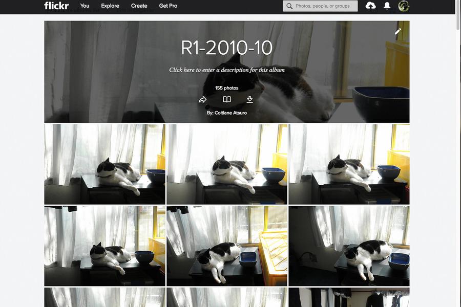 Lr7-Screen Shot 2019-01-19 at 5.41.03 AM