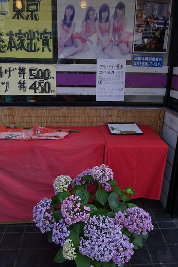 takahatafudo-R0013239