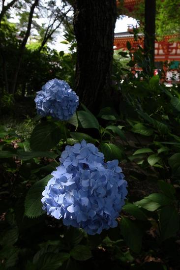 takahata-R0013204