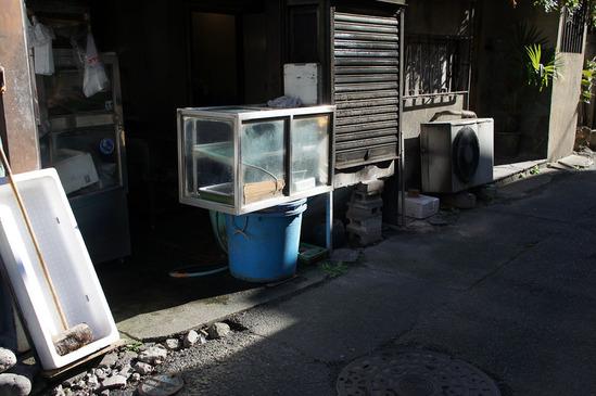 kichijoji-DSC01608
