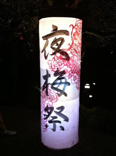 2011夜梅ブログ01