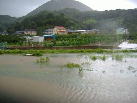 八戸川氾濫畑まで30cm-1