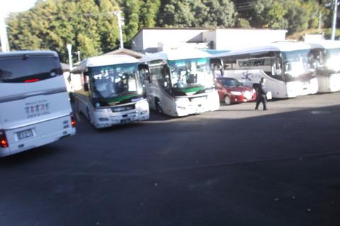 バスの間に一般乗用車一台