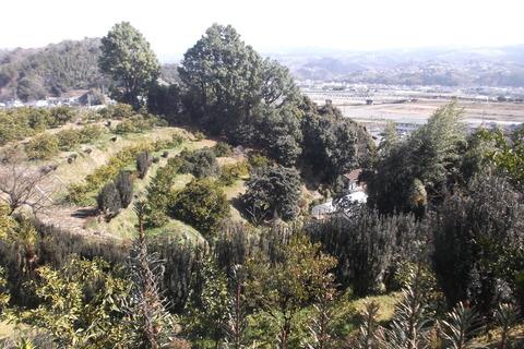 裏山全景2