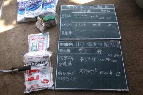 7月度柿・みかん消毒