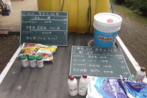 12みかん13柿消毒
