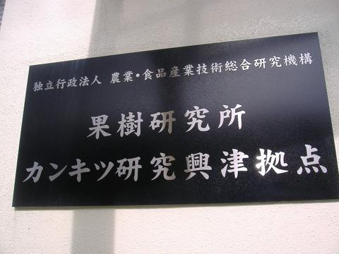 興津果樹研究所