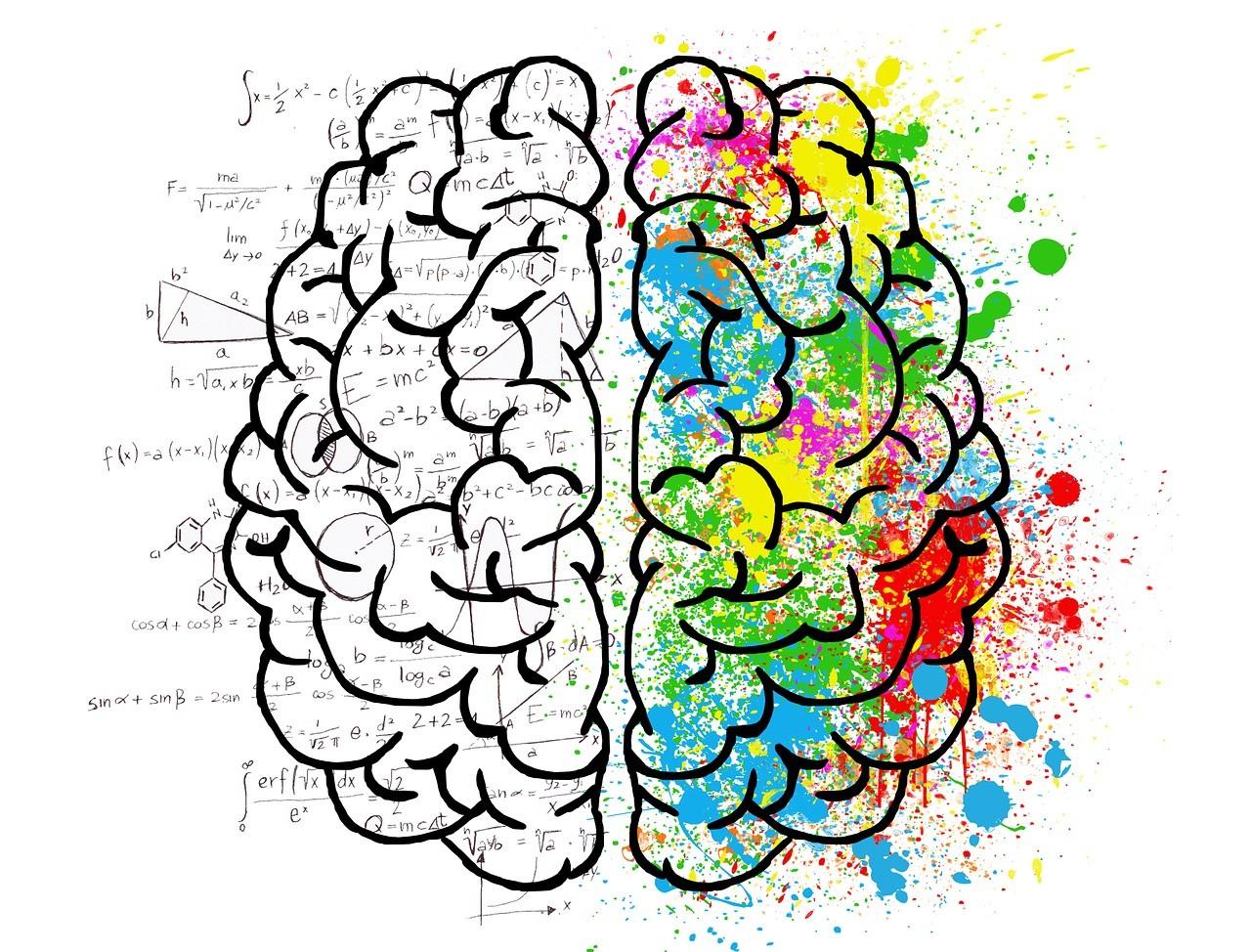 brain-3017071_1280