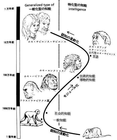 人間の知能の進化