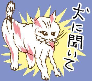 ネコ ぬこ LINEスタンプ シュール 2