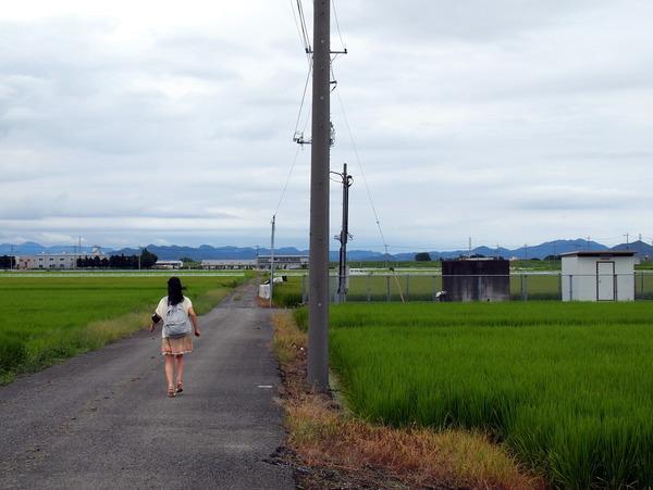 館林 田園風景