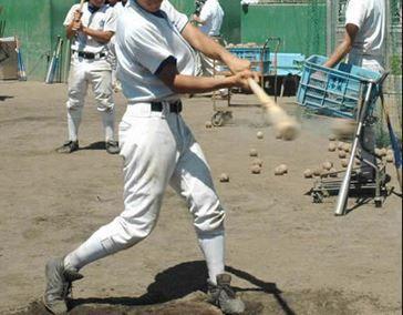 野球用品 竹バット 激安