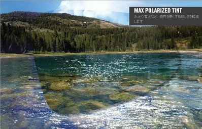 max_polarized_tint