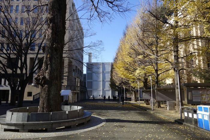 慶應大学三田キャンパス風景