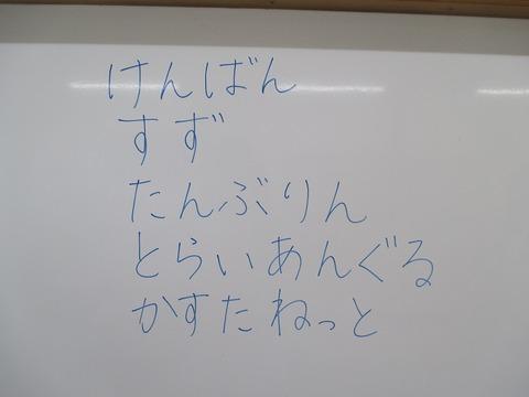 IMG_0204
