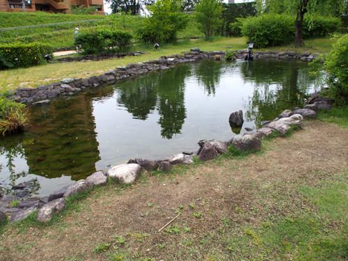 2017080706湯築城庭園の池