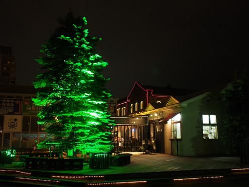 H501みなとの森前の電飾