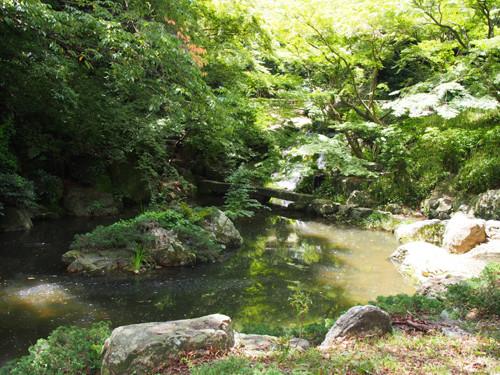 2018090815日本庭園の滑滝と島