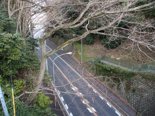 2017050602大手橋から二の丸堀