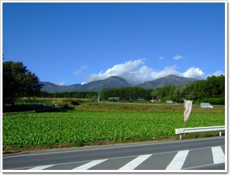 2009-10-11 021.jpg