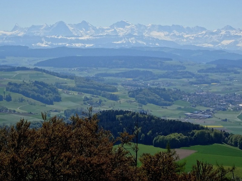 panoramablick_s12