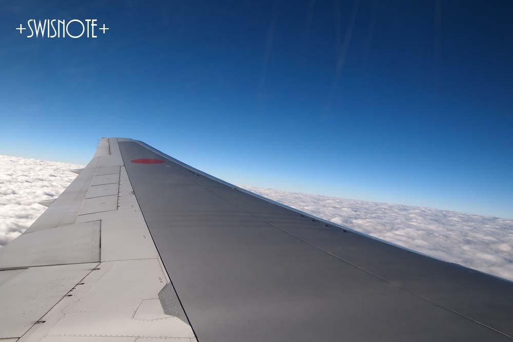 石垣島帰りの飛行機