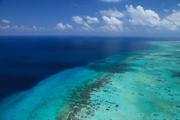 burrie reef